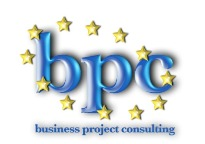 BUSINESS PROJECT CONSULTING